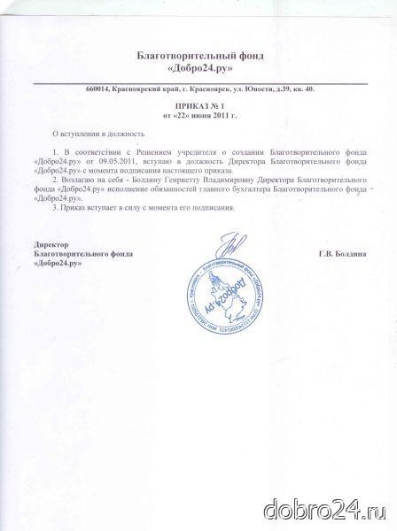 Должностная инструкция вице президента общественного фонда